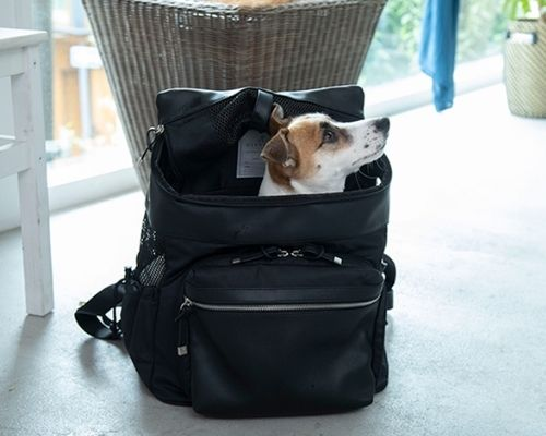 おしゃれな犬用リュックキャリーバッグ