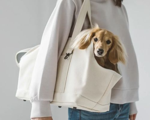 おしゃれなキャリーバッグ犬用トートバック